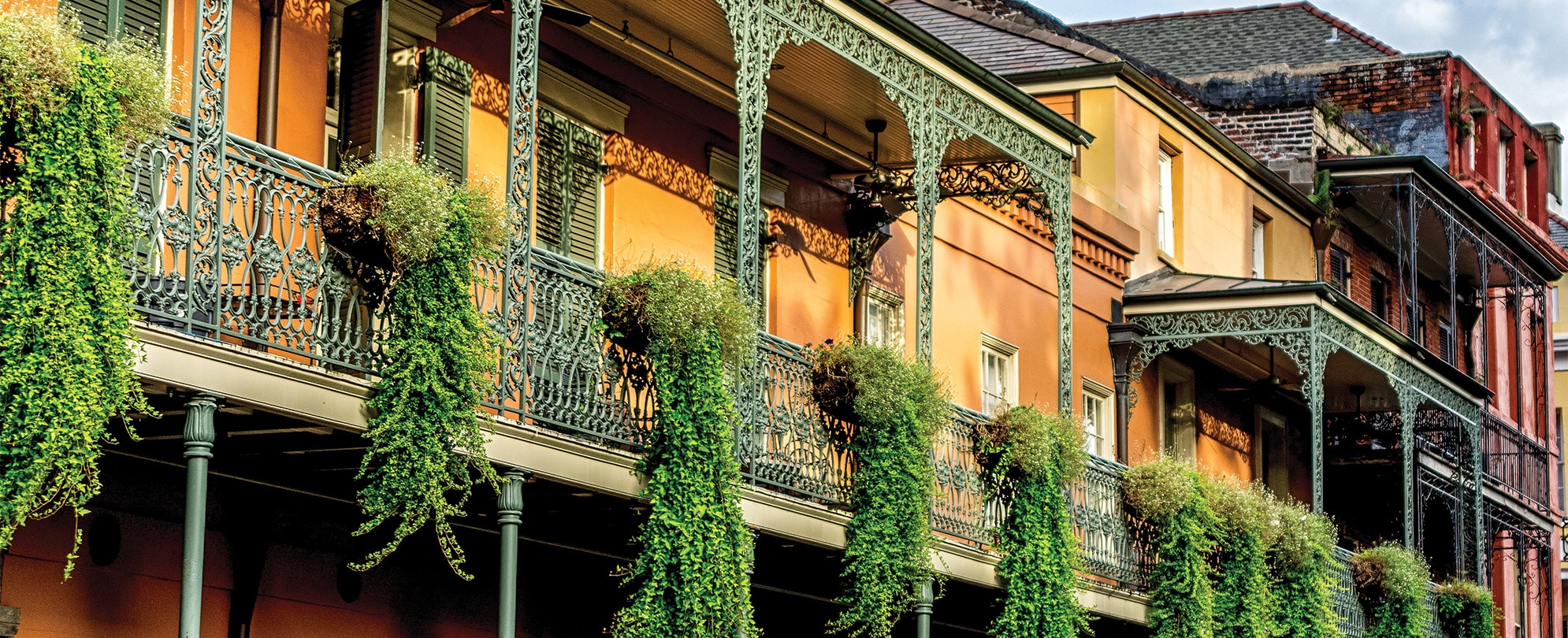 New-Orleans City Guide