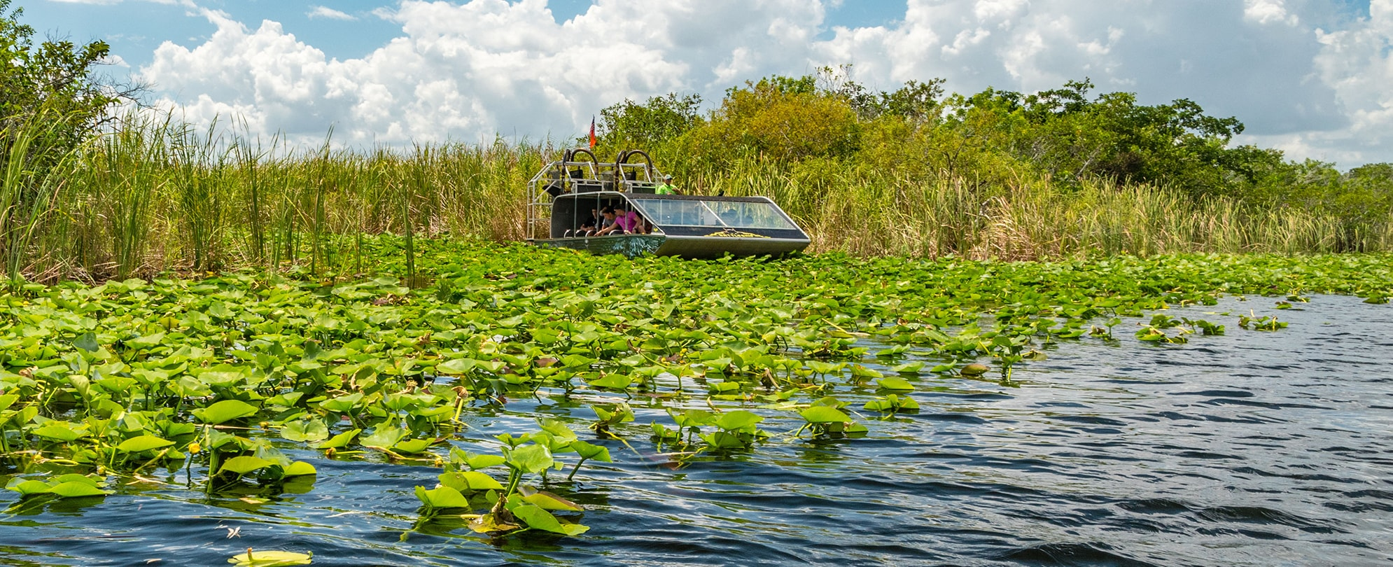 Airboat tour in Eveglades national park, Florida, USA